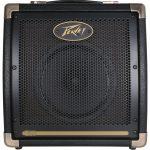 amplificador-guitarra-acustica-e20-ecoustic
